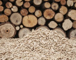 How much does wood biomass heating cost?